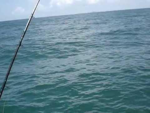 Naples Deep Sea Fishing Charters -  German Fishing Team
