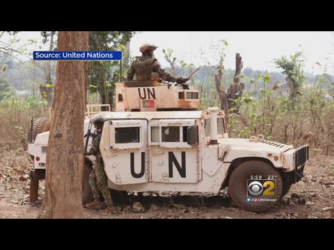 County Official: Let's Invite U.N. 'Peacekeepers' To Chicago