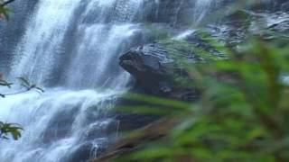 Relaxing Music Therapy - Relaxing Nature Scenes - Relaxing Music - Nature Scenes