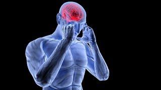 ЗАГАДКА ЧЕЛОВЕЧЕСТВА, нейронной сети или Центральная нервной системе человека.