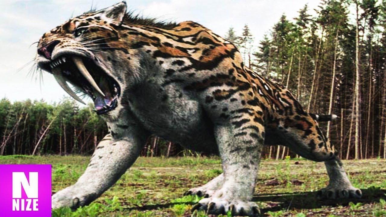 Ausgestorbene Tiere Bilder