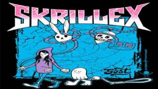 Skrillex - Scream and Shout (Live Last Dubstep Mix)