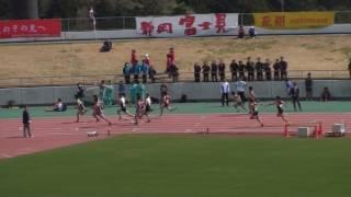 2017東部選手権 男子4×100mR 予選2組