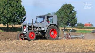 Pflügen mit dem IFA Pionier Traktor - plowing with a historic Tractor