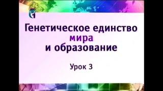 Наука и образование. Урок 3. Теория генетического единства Мира