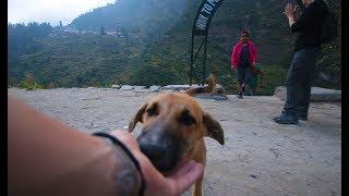 BACKPACKING INDIA ALONE- EP:3 | KASOL TO RISHIKESH | Adventure Vlog