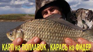 КАРП на ПОПЛАВОК КАРАСЬ на ФИДЕР в сильный ветер Рыбалка по холодной воде