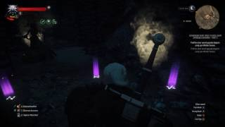 The Witcher 3: Wild Hunt - Part 177 -- Legendary Superior Wolven Silver Sword Location