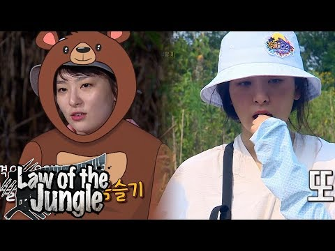 Who Will Taste the Spicy Pepper of Lacandon? Its Seul Gi!! Law of the Jungle Ep 323