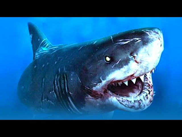 HERRA HAI SIMULAATTORI | Pelataan Shark Simulator