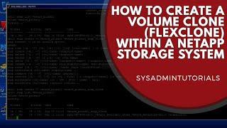 How to create a Volume Clone (Flex Clone) within a Netapp Storage System