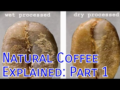 Natural Coffee Explained: Part 1