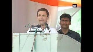 Champaran rally: Rahul dubs PM Modi as 'Feku'