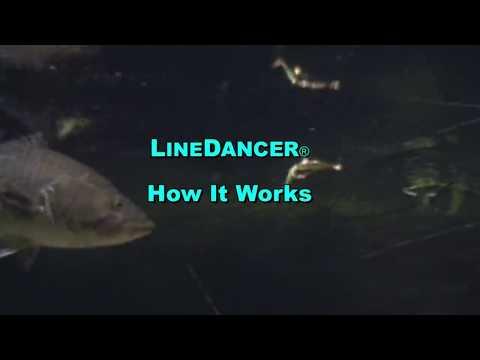LineDancer® - How It Works