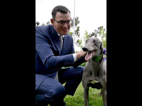 Daniel Andrews' Speech At The 2017 TAB Great Chase Final