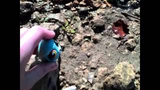 Lps: клип на речке