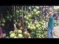 Amazing Street Fruits Market | Biggest Fresh Street Foods Place Of Fruits In Bangladesh
