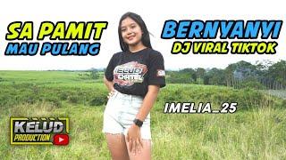 DJ SA PAMIT MO PULANG X BERNYANYI- BERNYANYI