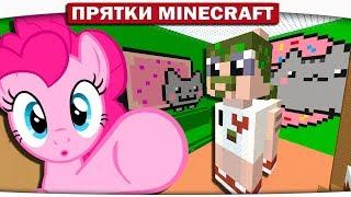 НАСТОЯЩИЙ ПОНЕРОН И ПОНЕКОТИК!! - Прятки с поняшками 96