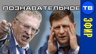 Зачистки криминала. Арест Фургала. Угрозы Жириновского. Прямой эфир