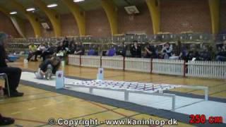 Danish Championships 2010 in Rabbit Hopping