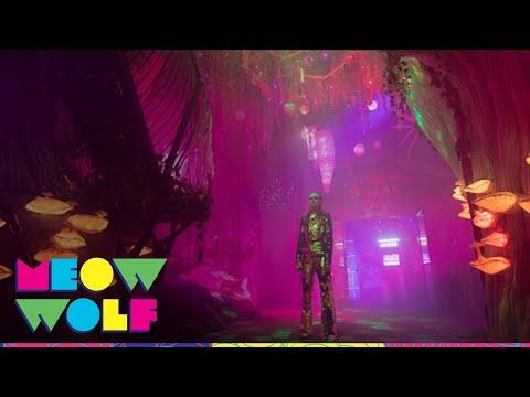 "evan-+-zane---""white-rabbit""-(official-music-video)-|-meow-wolf"