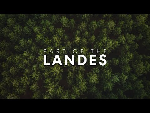 THE LANDES | 4K TRAVEL 🌲