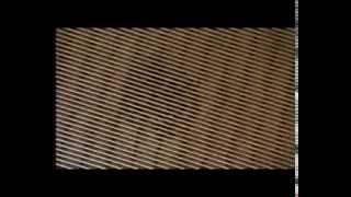 видео Лесной дом в стиле модерн в Канаде