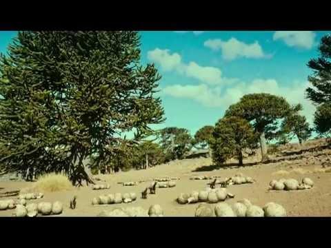 Argentinosaurus PT 1 .