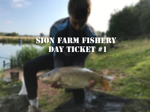 DAY TICKET #1 - SION FARM FISHERY