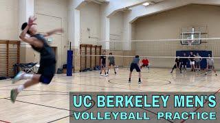 Serve Receive, Middles, Spike | UC Berkeley Men's Volleyball Practice PART 1 (4/4/19)