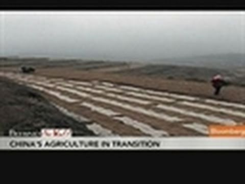 China Farmers Seek to Modernize Agricultural Techniques