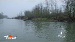 Loir-et-Cher : les castors des bords de Loire