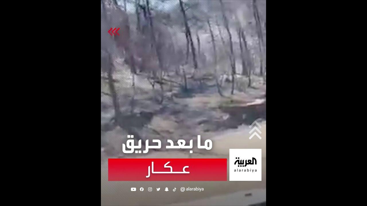 فيديو يوضح آثار الحريق الذي اجتاح مساحات واسعة من غابات منطقة عكار في لبنان  - نشر قبل 2 ساعة
