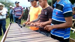 baile del venado, marimba guatemalteca Q'eqchi' LMC