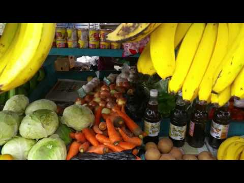Day 7 Vlog Buying Mango and Sugar Cane To Carry Up