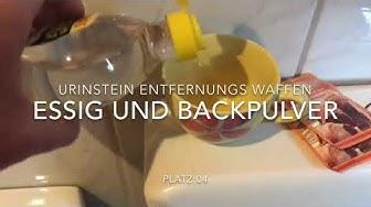 Urinstein entfernen Top 10 Urinstein Entfernungs Ranking die Besten Waffen gegen Ablagerungen
