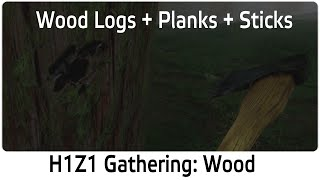 H1z1 Gathering: Wood Logs, Wood Planks And Wood Sticks