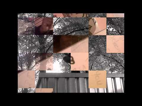 pro black-street album