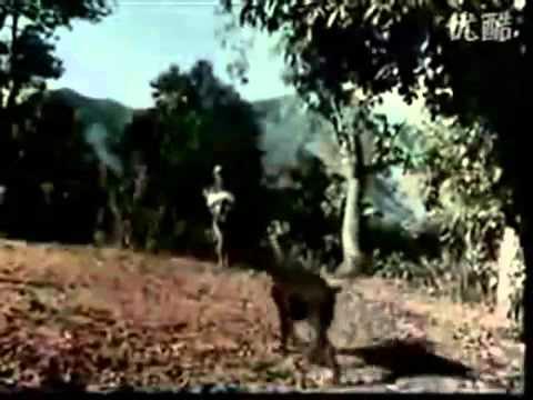 banma fulyo - original video from sindur nepali movie