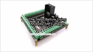 Overview Of Mybotic MP3 Player