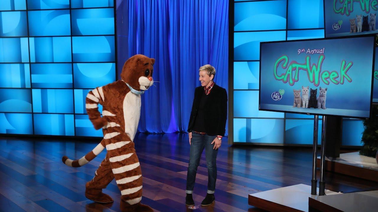 Ellen Kicks Off 2018 Cat Week Right Meow Youtube