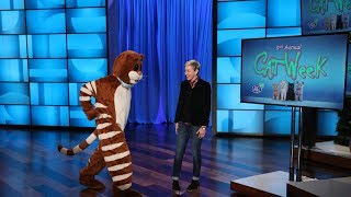 Ellen Kicks Off 2018 Cat Week Right Meow!