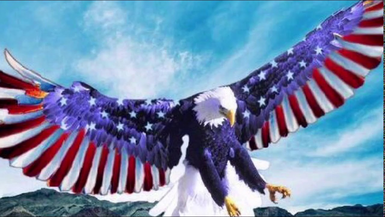 land of the free home of the brave lyrics