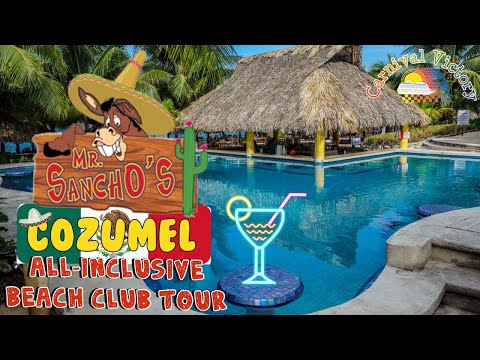 Mr. Sanchos   Cozumel Mexico   Everything You Need To Know