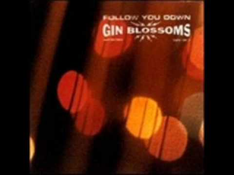 Gin Blossoms-Seeing Stars (live)