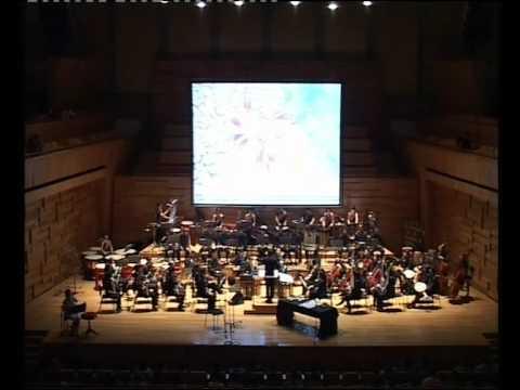 SMU Chinese Orchestra - Batik