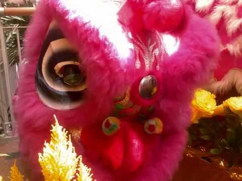 新秀《新的一年》 Chinese New Year Song - Choy Sheng Dao 2010