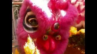 新秀《新的一年》 Chinese New Year Song - Choy Sheng Dao 2010