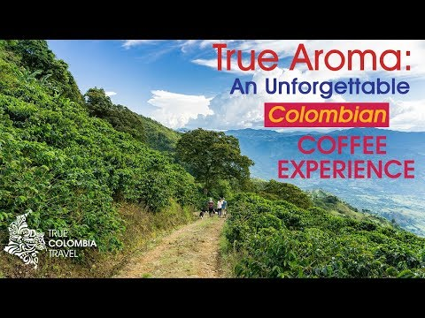 True Colombia Travel True Aroma Experience